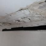 Pimlico restoration 5